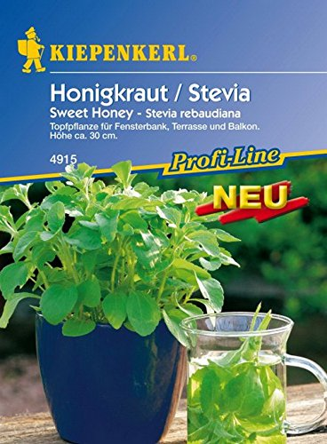 Kiepenkerl, Honigkraut Stevia Sweet Honey