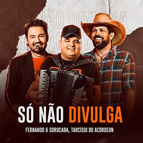 Fernando & Sorocaba & Tarcísio do Acordeon