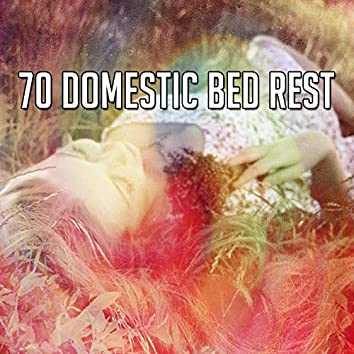 70 Domestic Bed Rest