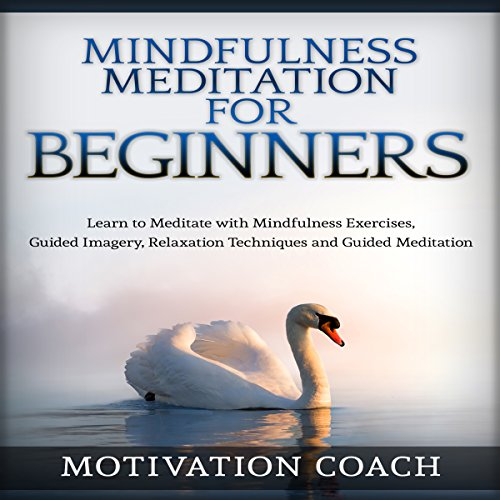 Mindfulness Meditation for Beginners Audiobook By Motivation Coach cover art