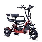 TTFC Triciclo eléctrico pequeño para Padres e Hijos, Scooter eléctrico de 3 Ruedas con Motor de 350 W, Plegable, 20 Km/H, Ajuste de 3 velocidades, Apto para Ancianos, Adultos (tamaño: 30KM) 55KM