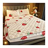 yueyouhuyou Materasso Trapuntato Cover King Queen Bed Shienswen Lambswool Applessed Sheet Materasso Topper Topper Air-permeables Bed Pad (Color : A, Size : 48x74cmx1 Pillowcase)