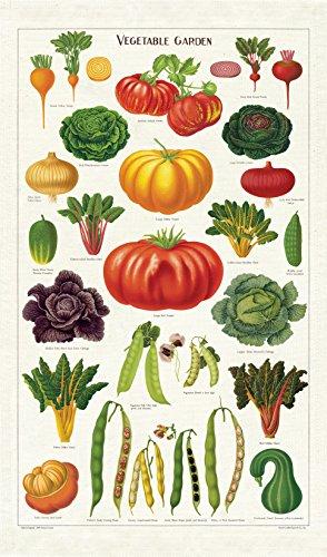 Cavallini Papers & Co Inc. Florida Map - Paño de Cocina, Multicolor