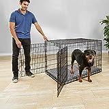 Petco Brand - You & Me Ultra Tough 2-Door Folding Dog Crate, 49' L x 31' W x 33' H, XX-Large
