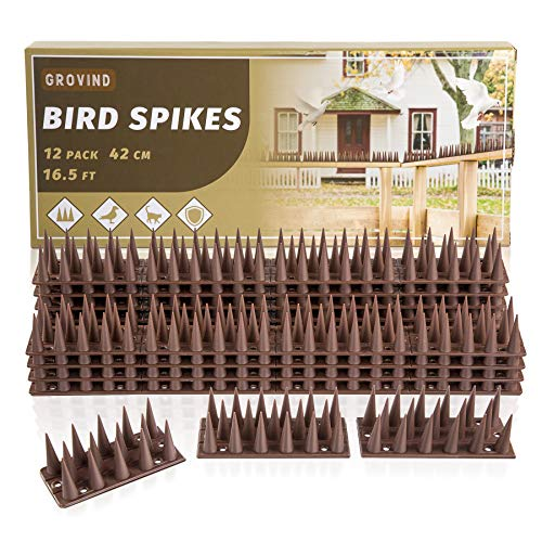 LESES Pinchos antipalomas de 5 metros para ahuyentar pájaros   gatos   palomas   mapaches, pinchos de seguridad para vallas, alféizares de ventana, jardín (12 unidades)