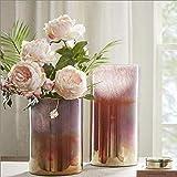 Vase Grave Dayscreative Simplicity Nebulosa de vidrio degradado arreglo de flores para decoración del hogar, servicio al cliente de vidrio para flores (tamaño : 35 x 18 cm)