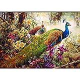 Pintura Al óleo Abstracta por Número Bird Dawing On Canvas Imagen para Vivir Pintura De Arte Moderno por Números Kits por Números Cuadros De Pared De Decoración del Hogar para Niños Set De P