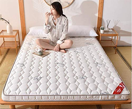 GuoEY Thick Mattress Protector - Breathable Foldable Tatami Mattress Topper Bedding Multi Size for Home Yoga Baby Crawling Mat,C,90x190cm