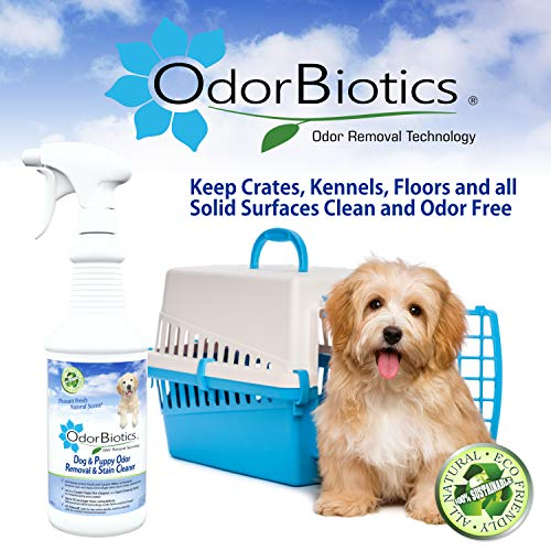 OdorBiotics Pet Stain & Odor Remover - Use for Dog Bedding Playpens Crates Carriers Kennels Clothes Puppy Toys - Eliminate Urine Smell on Carpet Area Rugs Hardwood Sofa Fabric - 32 oz Spray Bottle