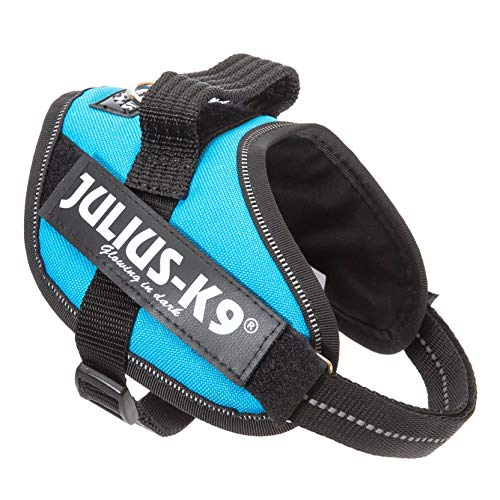 Julius-K9, IDC Powergeschirr, Größe: XS / Mini-Mini, Aquamarine
