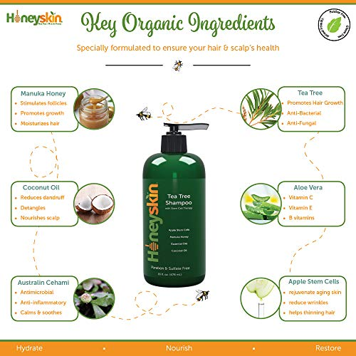 Organic Tea Tree Oil Shampoo - Hydrating Dandruff Hair Loss Itchy & Dry Damaged Scalp Treatment - Natural & Organic - Paraben and Sulfate Free - Manuka Honey, Coconut Oil and Stem Cells - 16oz