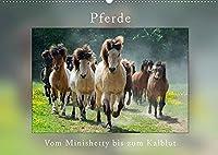 Pferde Vom Minishetty bis zum Kaltblut (Wandkalender 2022 DIN A2 quer): Lustiger Pferdemixkalender (Monatskalender, 14 Seiten )