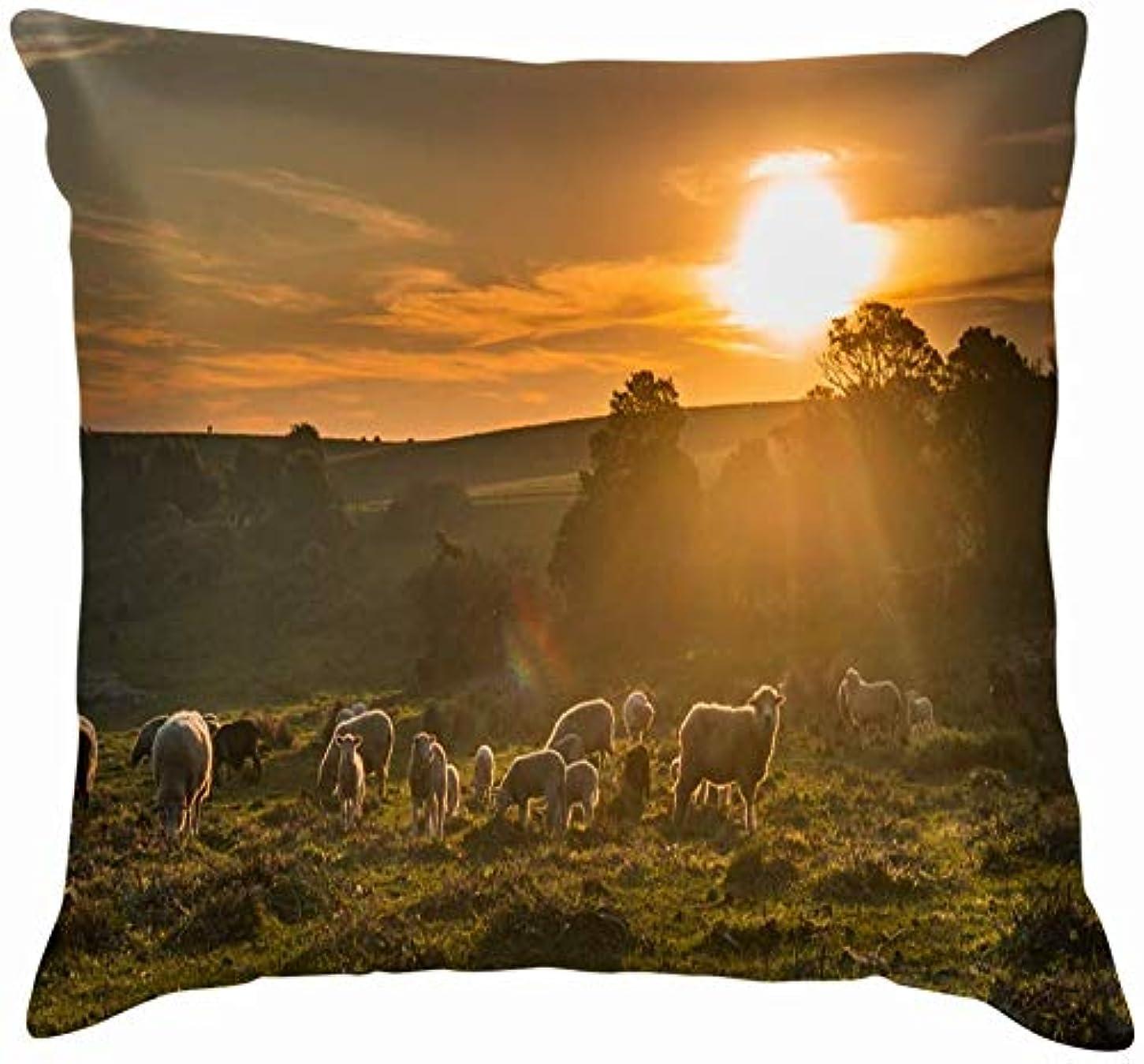 カーテンバリア大砲羊草を食べる美しい日没農場の動物野生生物農業自然投げる枕カバーホームソファクッションカバー枕カバーギフト45x45 cm