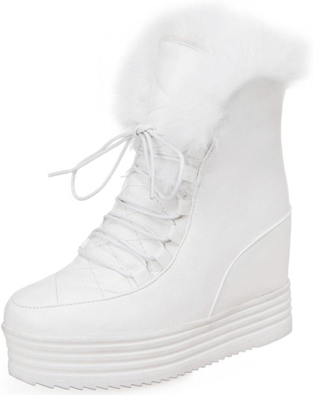 FANIMILA Women Warm Lined Boots Hidden Heel