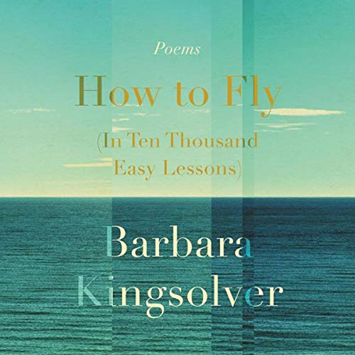 Couverture de How to Fly (in Ten Thousand Easy Lessons)