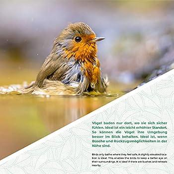 WILDLIFE FRIEND Abreuvoir pour oiseaux sur tige - Résistant aux intempéries - Abreuvoir à oiseaux - Abreuvoir avec tige et petit oiseau.