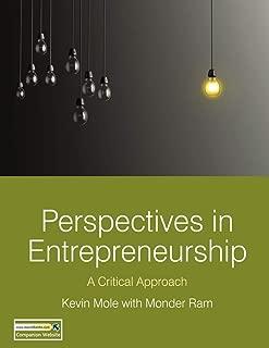 Perspectives in Entrepreneurship: A Critical Approach (English Edition)