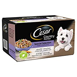 Cesar Country Kitchen – Wet Dog Food for Adult Dogs 1+ Special Selection in Gravy, 24 Trays (24 x 150 g)