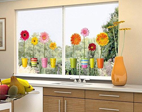Klebefieber Fenstersticker Gerberatöpfe B x H: 50cm x 21cm