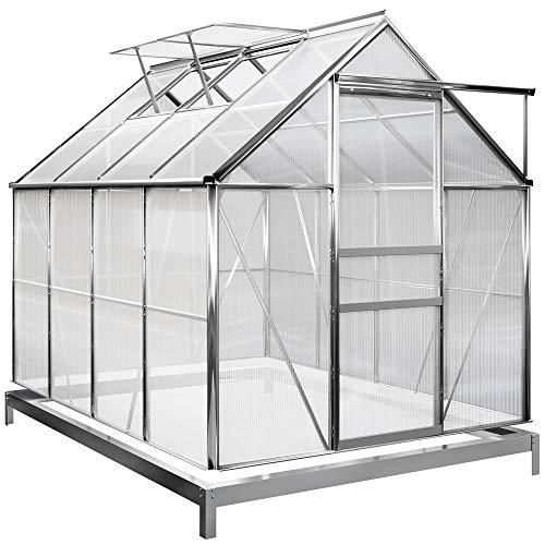 Deuba Serre de Jardin en alu 7,6m³ avec 2 Fenêtres et Une Gouttière + Fondation/Base