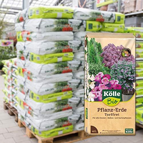Kölle's Beste Pflanzerde, torffreie Pflanzenerde für alle Garten- und Balkonpflanzen, mit 1,5-Monate-Langzeitdünger, zum Topfen und Umtopfen, 60 Sack à 40 Liter Blumenerde