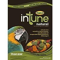 Higgins 466257 Higg Intune Food for Macaw, 18-Pound by Higgins