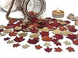 versandhop Konfetti-Blätter Herbst Erntedank Halloween Braun Tisch-Dekorieren Party Streudeko tischdeko 15g - 3