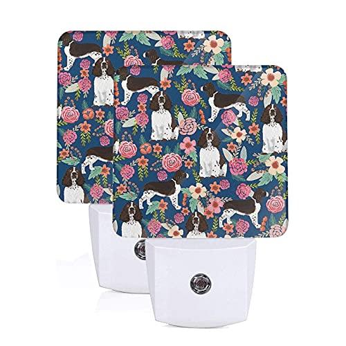 Springer Spaniel y luz nocturna floral retro, juego de 2 luces nocturnas LED enchufables, lámpara con sensor automático de anochecer a amanecer para dormitorio, baño, cocina, pasillo, escaleras