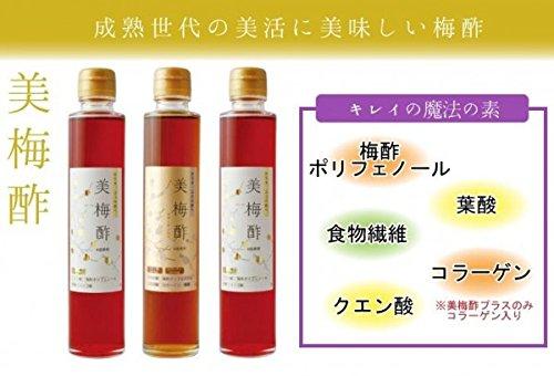 岩本食品 美活のための美味しい梅酢 美梅酢3本セット 3312