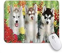 NINEHASA 可愛いマウスパッド 犬シベリアンハスキー子犬草花自然アウトドア夏の家族の友人 ノンスリップゴムバッキングコンピューターマウスパッドノートブックマウスマット