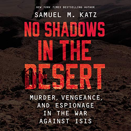 No Shadows in the Desert cover art