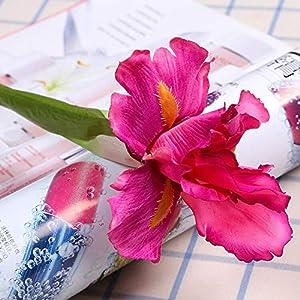 Silk Flower Arrangements Artificial and Dried Flower 2pcs Silk Artificial Irish Iris Flower for Wedding Decor Home Table Decoration Flores Fake Irish Flowers Fleurs Artificiell - ( Color: Rose Red Iris )
