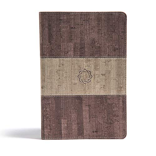 CSB Essential Teen Study Bible, Weathered Gray Cork LeatherTouch