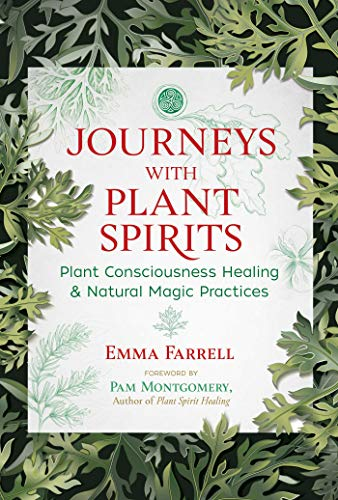 Journeys with Plant Spirits: Plant Consciousness Healing and Natural Magic Practices