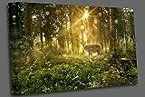 Qbbes, Sun brilla en un bosque de cuento de hadas Wall Art Picture Print-32x24inch(80x60cm)no frame