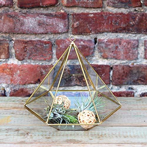 Mitienda Geometrisch terrarium diamant voor vetplanten, broeikas piramide | om op te hangen | vetplanten terrarium | glasterrarium