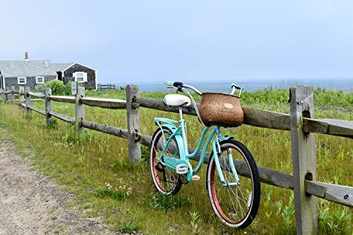 51vW9ifHuqL. SL500 Schwinn Perla Womens Beach Cruiser Bike