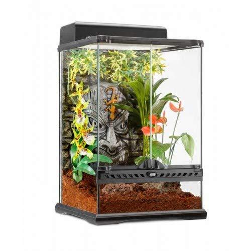 Exo Terra Pt2596 Tiki Terrarium Mini-Hoch 30x30x45cm, S
