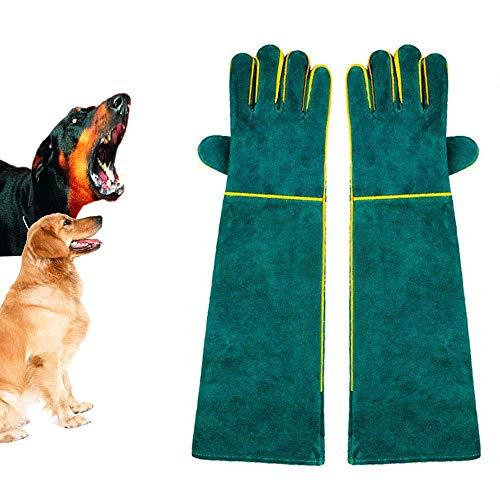 HGFLYF Handling-Handschuhe, bissfest, langlebig, Kratzfest, Handling für Hunde/Katzen, Vögel, Schlange, Papageien, Echsen, Reptilien, 56 cm Ärmellänge