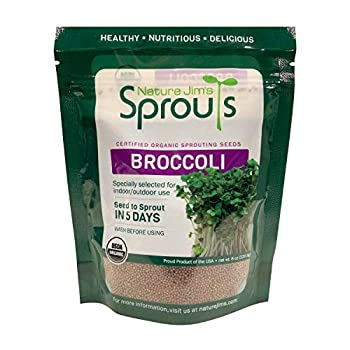 Nature Jim s Sprouts Broccoli Sprout Seeds - Certified Organic Broccoli Sprouting Seeds for Indoor/Outdoor Use - Rich in Sulforaphane Healthy Nutritious Broccoli Seeds Sprout in 5 Days - 8oz