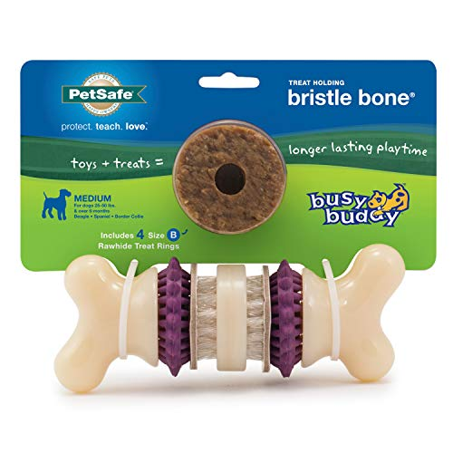 PetSafe Busy Buddy Bristle Bone Chew Toy for Dogs – Strong Chewers – Helps Clean Teeth –Purple, Medium