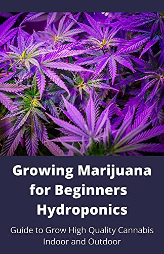 Growing Marijuana For Beginners Hydroponics : Guide To Grow High Quality Cannabis Indoor And Outdoor (English Edition)