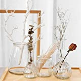 Set of 5 Rustic Small Glass Vase in Various Shapes Mini Vase Wedding Bridal Shower Centerpiece Table Vase