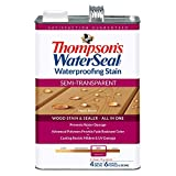 THOMPSON'S WATERSEAL 42821 1G MPL BROWN S-TRN...