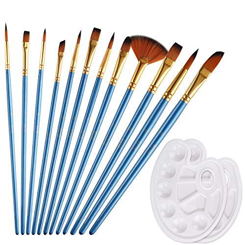 RZKJ-SHOP Pinselset Malen Künstlerpinsel Set für Acryl Aquarell Gouache Ölmalerei, 12 Premium Nylon Pinsel und 2 Mischpalette, Painting Kits Kreative DIY Körperfarbe für Kinder Anfänger Künstler