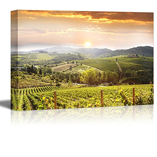 "wall26 - Vineyard Landscape in Tuscany Italy - Canvas Art Wall Art - 16"" x 24"""