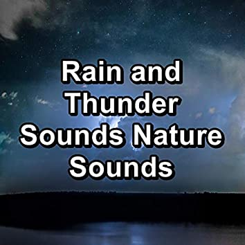 Rain and Thunder Sounds Nature Sounds