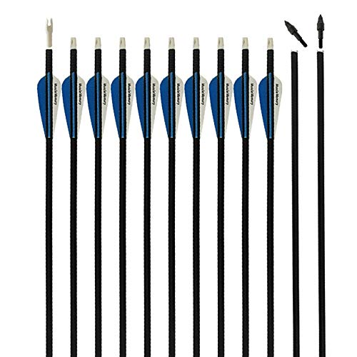 REEGOX Archery Hunting Practice Arrows for Compound and Recurve Bow-30 inch...
