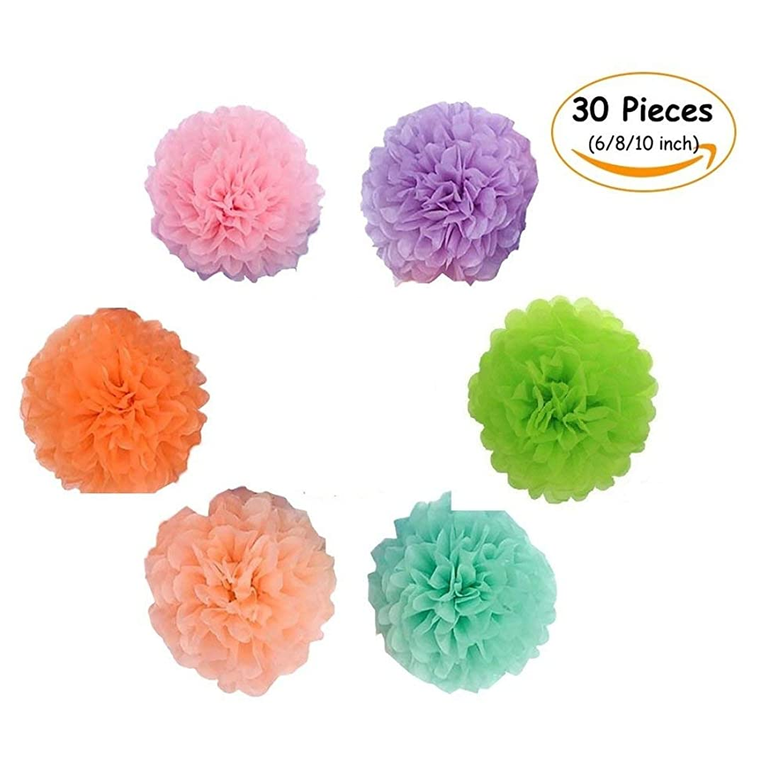 Paper Pom Poms, 30pcs of 6, 8, 10Inch, Tissue Hanging Paper Flowers Perfect for Wedding Decor Birthday Celebration Party Indoor Outdoor Decoration fjtbo4402735076