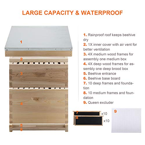 CO-Z Bee Hive, Beehive Bee Box with 10 Medium &10 Deep Honeycomb Foundation Frames, Bee Keeping Supplies Starter Kit for Beginners, 2 Layer Langstroth Beehive Honey Bee House Bee Hives